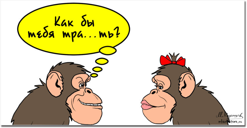 Кто-кто в черепушке живет? Часть 2. Вся такая непредсказуемая, внутренняя обезьяна. Она —  источник эмоций человека.