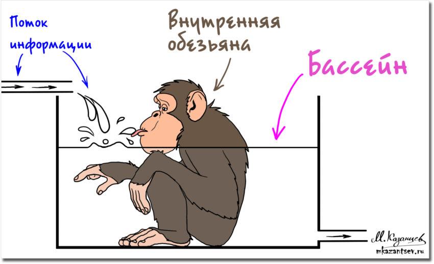 Внутренняя обезьяна | Эмоции в общении | Рисунки Михаила Казанцева